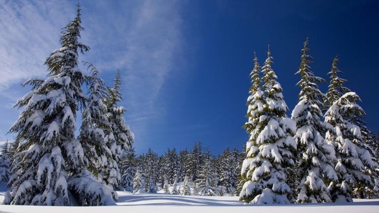 Vinterstängt på kansliet